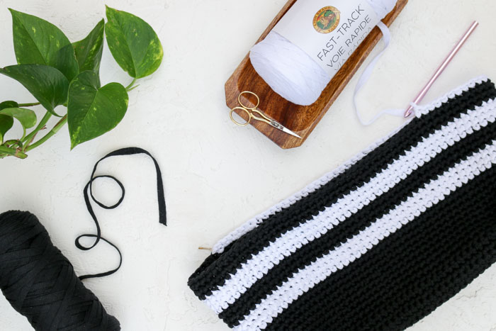 Lion Brand Fast-Track yarn in Airstream White and Jet Black. Free beginner crochet purse pattern.