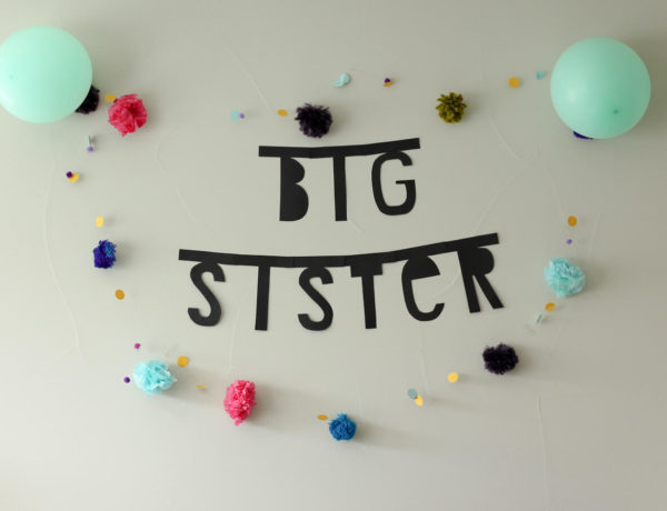 Help ease the transition of a growing family by throwing a big brother or big sister party for the older sibling. These easy DIY party decorations and playful kids craft ideas will make for a meaningful, fun party. | MakeAndDoCrew.com