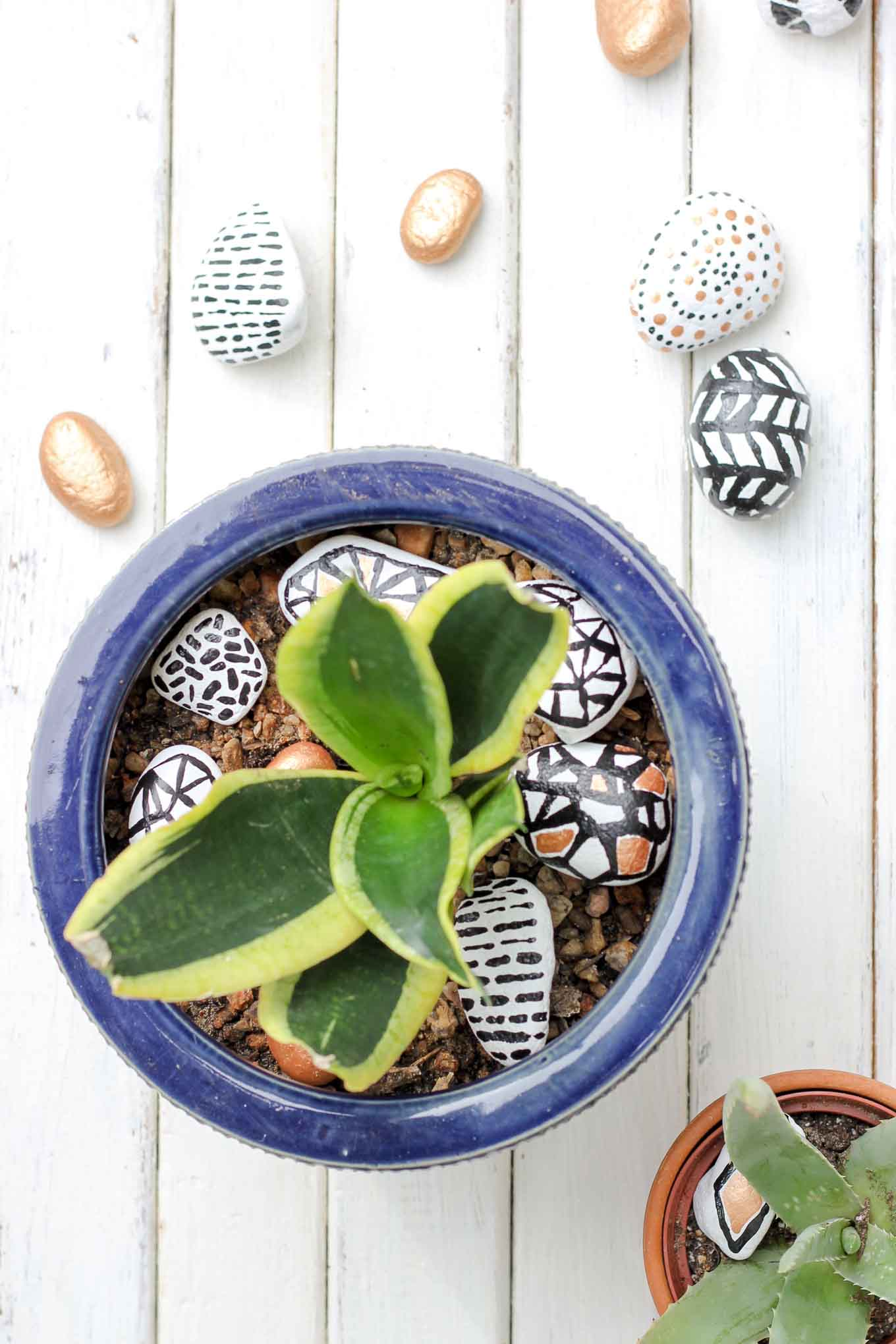 These DIY hand painted rocks are a simple and budget-friendly craft that add pizazz to potted plants and gardens. Find some stones, grab your paint and dream up some designs! | MakeAndDoCrew.com