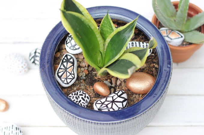 Potted Plant Accents: Hand Painted Rocks!