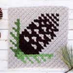 Corner-To-Corner Crochet Pinecone Pattern