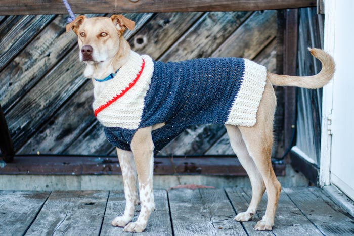 This free, easy crochet dog sweater pattern fits very small, medium and large dogs and is perfect for winter! Easy pattern appropriate for beginners in sizes XXXS-2XL.