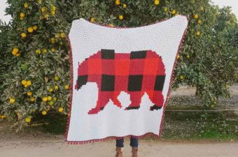Plaid bear corner-to-corner crochet blanket free pattern.