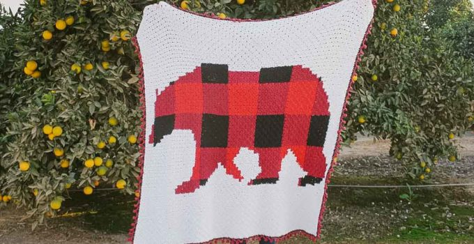 Modern, Rustic C2C Crochet Bear Blanket – Free Pattern by E'Claire Makery